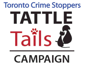 Tattle Tails Campaign
