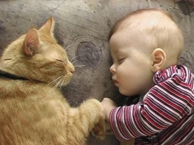 Baby & Cat Sleeping