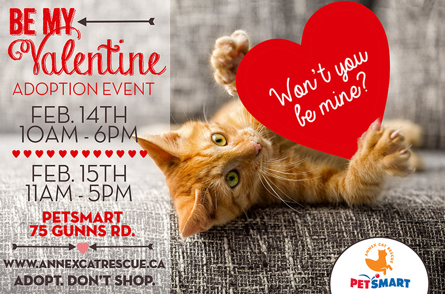 Be My Valentine Adoption Event