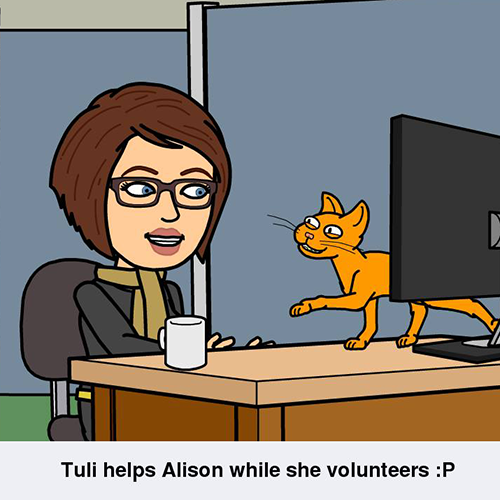 Volunteer Profile: Alison F