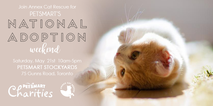 PetSmart Charities Adoption event 2016