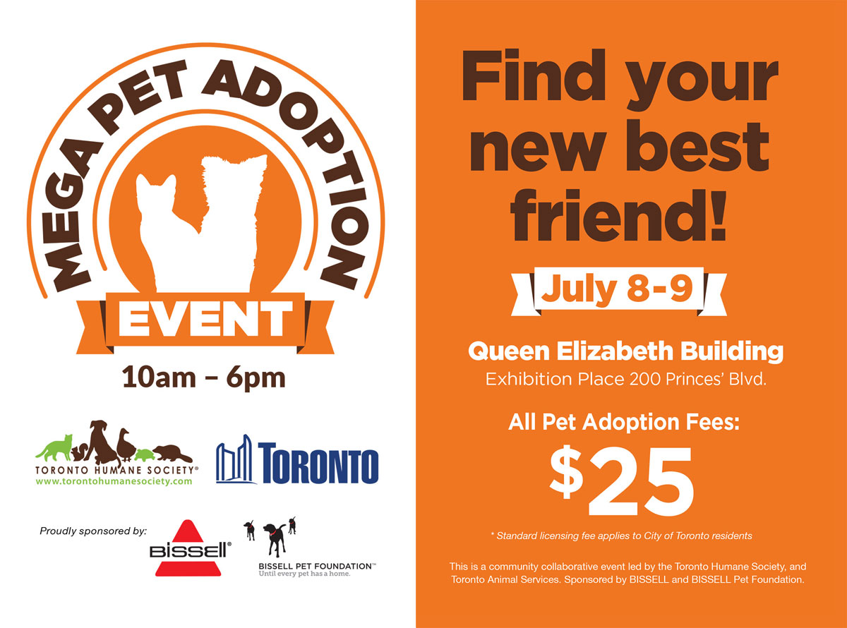 Toronto Mega Adoption Event
