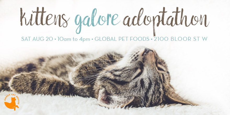 Adoptathon - Global Pet Foods - August