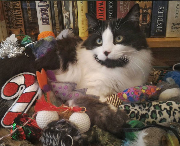 Charlie with her toys
