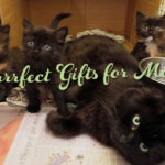 mother's day gifts for cat-lovers