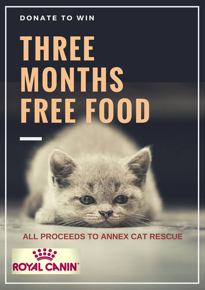 all proceeds to benefit Annex Cat Rescue